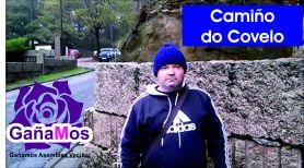 covelo1